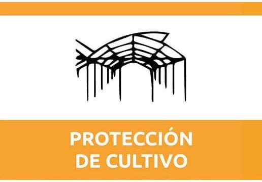 Protección cultivos